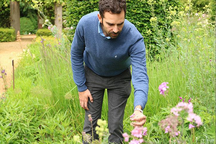 Consulenza Giardini   Garden Coach - Stefano Assogna