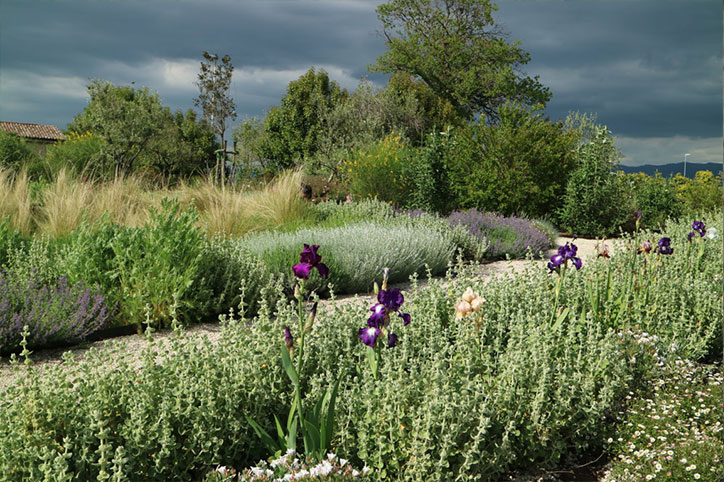 Realizzazione Giardini | Stefano Assogna - Garden Designer