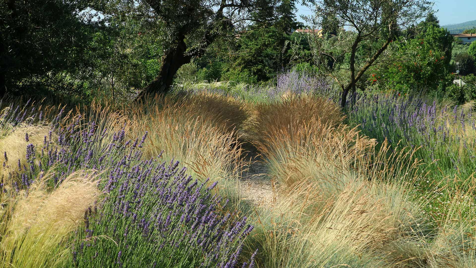 Progettazione & Realizzazione Giardini | Stefano Assogna