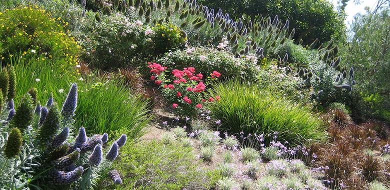 Imparare a progettare il proprio giardino